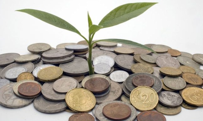 grow-investment